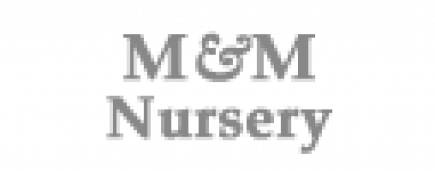 m&m-nursery