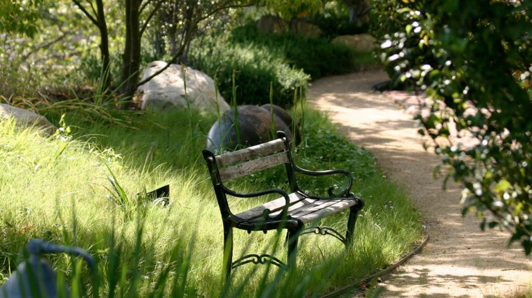 Shady bench and pathway - Spindler 2019